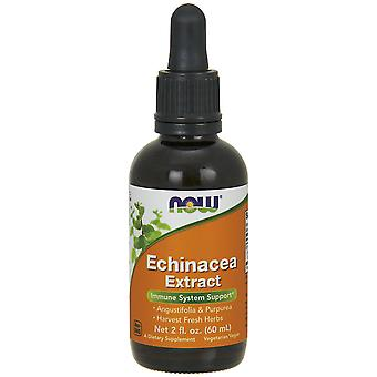 Now Foods Echinacea Extract 60 ml (Herbalist's , Natural extracts)