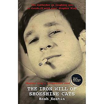 The Iron Will of Shoeshine Cats
