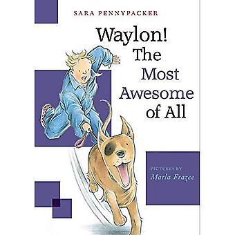 Waylon! The Most Awesome Of All: Waylon! Book 3