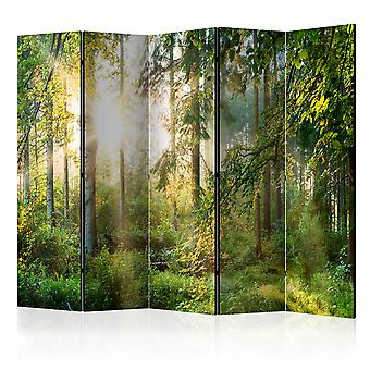 Rum avdelare-Untamed Nature II [rums avdelare]
