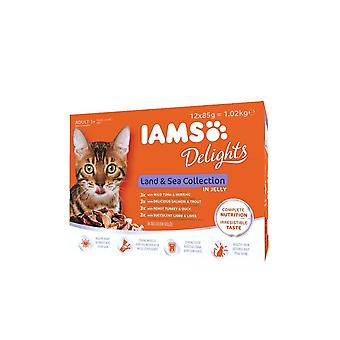 Iams Delights Land & Sea Cat Food Collection In Jelly