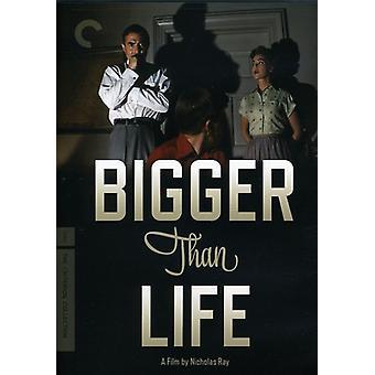 Bigger Than Life [DVD] USA import