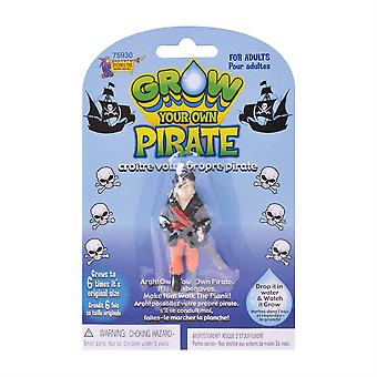 Ein Pirat zu wachsen