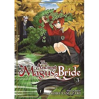 Ancient Magus' Bride Vol. 3, The