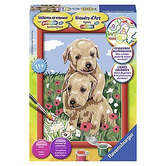 Knuffelende puppies Schilderen op nummer