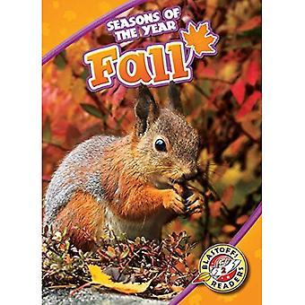 Fall (Seasons of the Year)