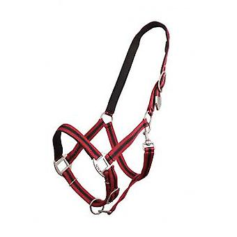 QHP Bridle Red / Black Pony (Horses , Pony world , Bridles and reins)