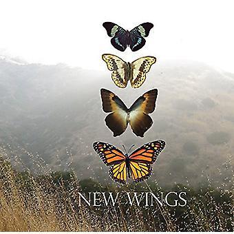Jen Rosen - New Wings [CD] USA import