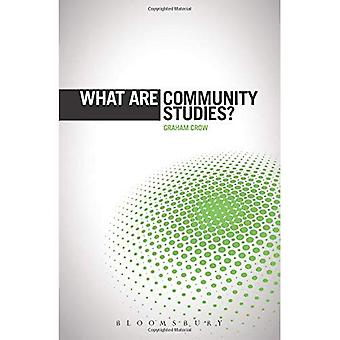 What are Community Studies?� (The 'What is?' Research Methods Series)
