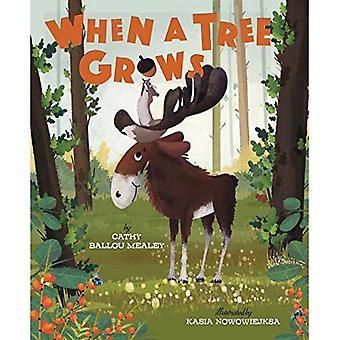 Quand un arbre grandit