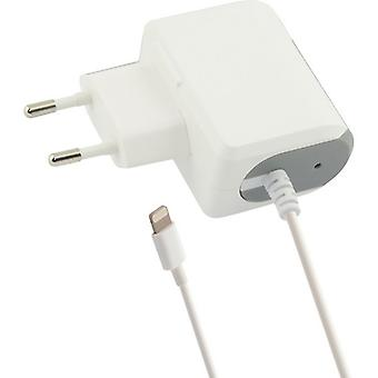 Lightning 1A iPhone white wall charger