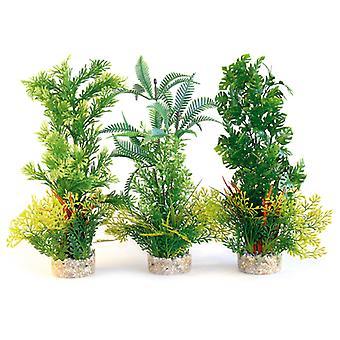 Sydeco naturelles plantes Aquaplant Xl 35cm (Pack de 6)