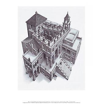 Ascending and Descending Poster Print by MC Escher (11 x 14)