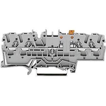 WAGO 2002-1871 N terminal 5.20 mm Pull spring Configuration: L Grey 1 pc(s)