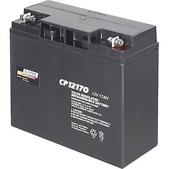 Conrad energy CP12170 250214 VRLA 12 V 17 Ah AGM (W x H x D) 181 x 167 x 76 mm M5 connector Maintenance-free