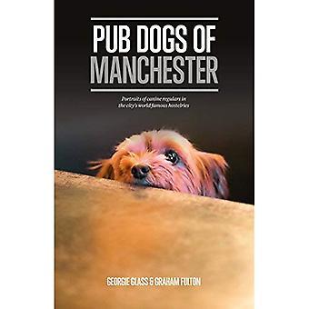 Pub honden van Manchester