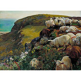 Our Englisth Coasts,William Holman Hunt,50x40cm
