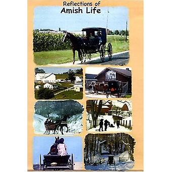 Reflection of Amish Life - This Video Includes [DVD] USA import