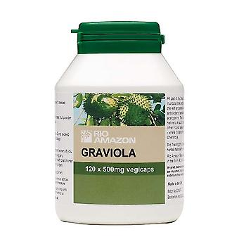 Rio Amazon, Graviola Fruit Extract 500mg, 120 vegicaps