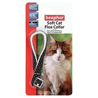 القط بيفر ذوي الياقات البيضاء الناعمة التألق