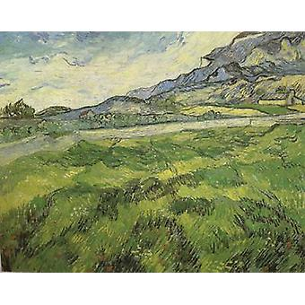 Marguerite Gachet in the Garden, Vincent Van Gogh, 55x46cm