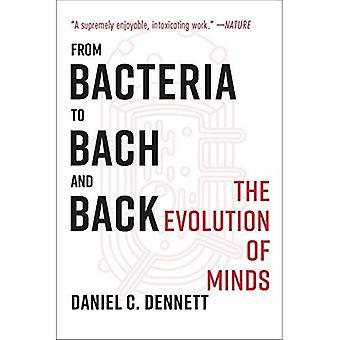 Fra bakterier til Bach og tilbake: utviklingen av sinn