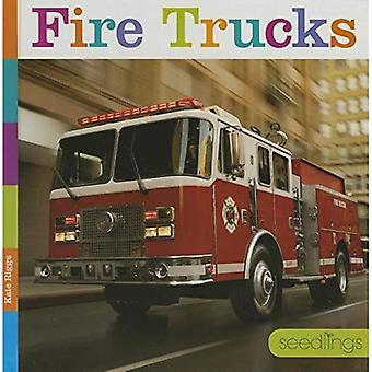 Fire Trucks (Seedlings)