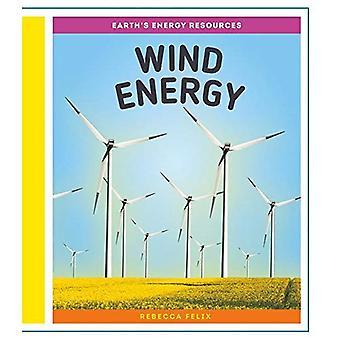 Vindkraft (jordens energiresurser)