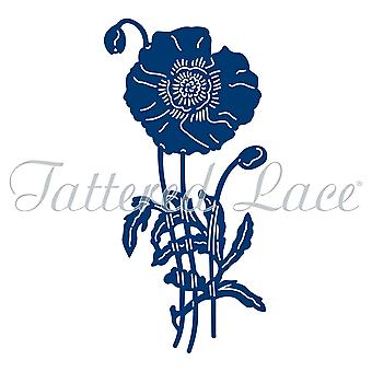 Tattered Lace trots Poppy sterven