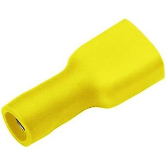 Blade receptacle Connector width: 4.8 mm Connector thickness: 0.5 mm 180 ° Insulated Yellow Cimco 180270 1 pc(s)