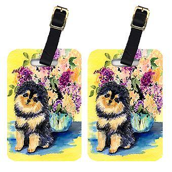 Carolines Treasures  SS8290BT Pair of 2 Pomeranian Luggage Tags