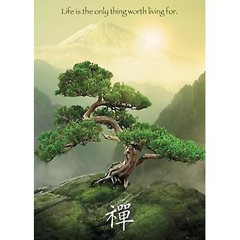 Zen Mountain - reus Poster Poster afdrukken