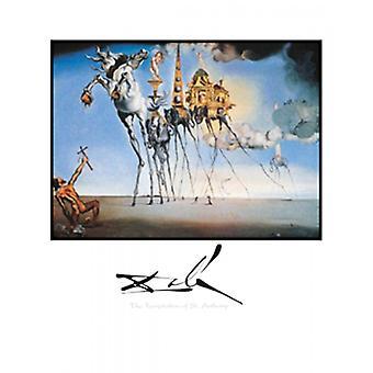 Fristelsen av St Anthony plakatutskrift av Salvador Dali (22 x 28)