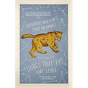 Dinge, die sind: Begegnungen mit Tieren, Pflanzen und Sternen