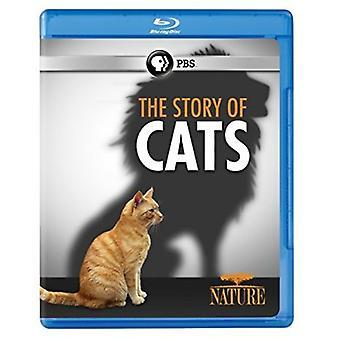 Natur: Die Geschichte der Katzen [Blu-Ray] USA import