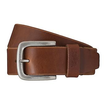 Levi BB´s belts men's belts leather jeans belt Brown 6258