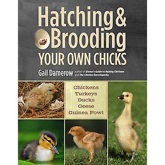 Hatching and Brooding Your Own Chicks - Chickens - Turkeys - Ducks - G