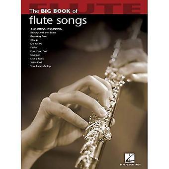 Il grande libro delle canzoni flauto (grande libro (Hal Leonard))