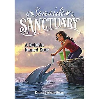 A Dolphin Named Star (Seaside Sanctuary)