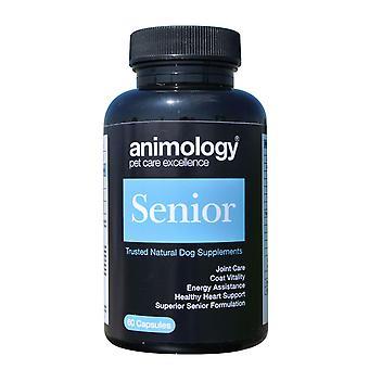Animology Senior 60 faner