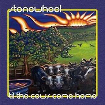 Stonewheel - Til the Cows Come Home [CD] USA import