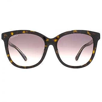 Gucci Classic Logo Square Sunglasses In Havana