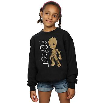 Marvel Girls Guardians Of The Galaxy I Am Groot Scribbles Sweatshirt