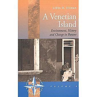 Venezianischen Insel Umwelt, Geschichte und Wandel In Burano