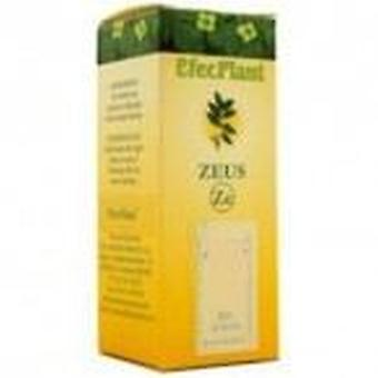 Suplementos Zeus Efecplant No. 04 Replies Lung-Vias (Metal) 60Ml.