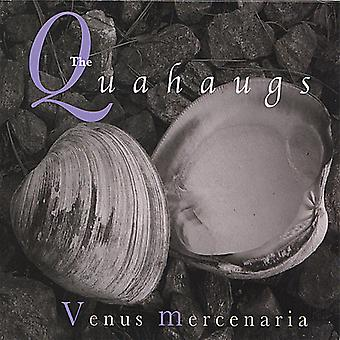 Quahaugs - Venus Mercenaria [CD] USA import