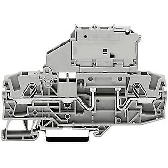 Fuse terminal 7.50 mm Pull spring Configuration: L Grey