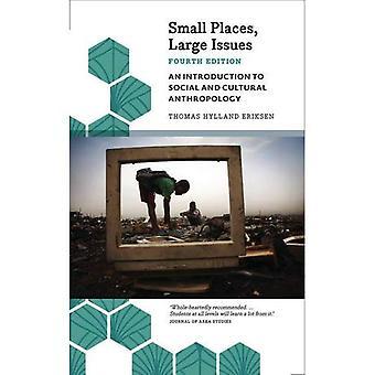 Små platser, stora problem - fjärde upplagan: En introduktion till Social och kulturell antropologi (antropologi, kultur och samhälle)