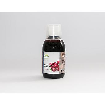 Sotya Cranberry Concentrate 250 ml