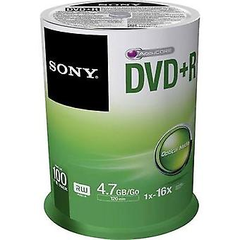 Blank DVD+R 4.7 GB Sony 100DPR47SP 100 pc(s) Spindle